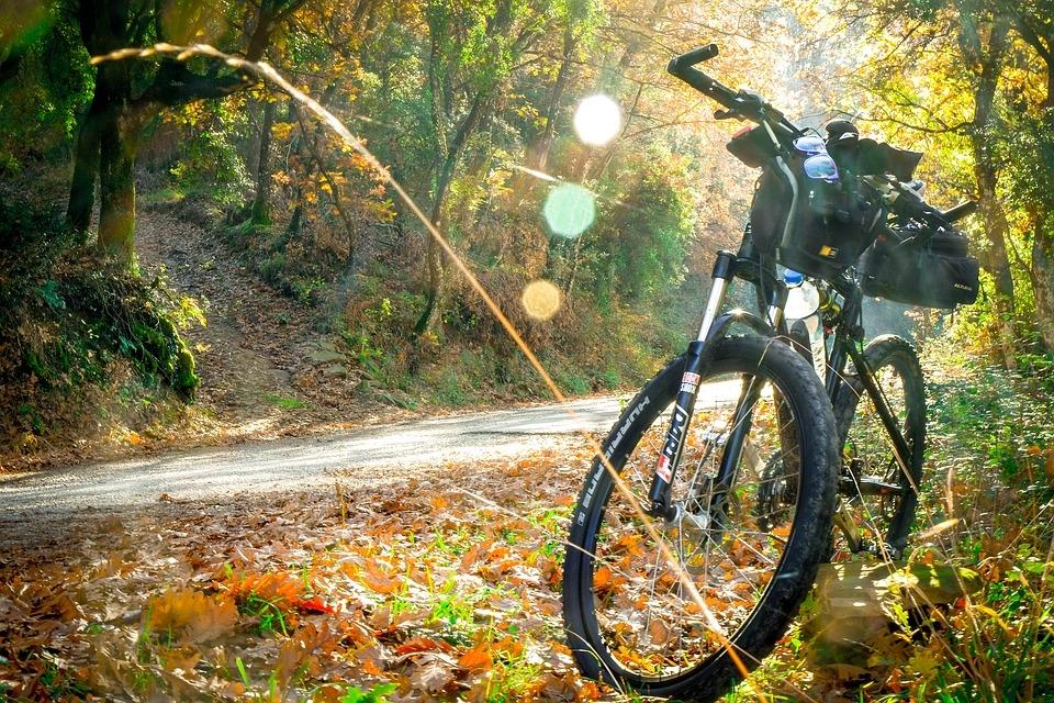 Cycling - 2846201 - 960 - 720