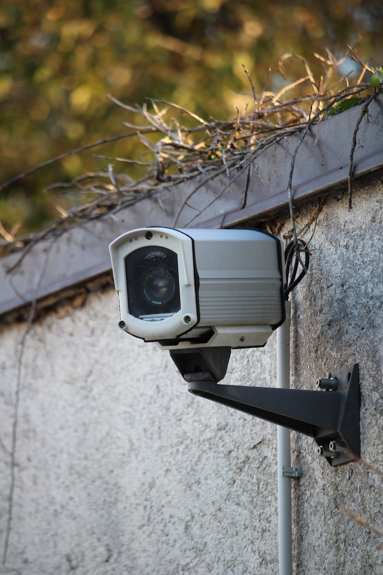 Video - camera - 3728625 - 1920
